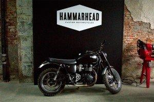 Hammarhead